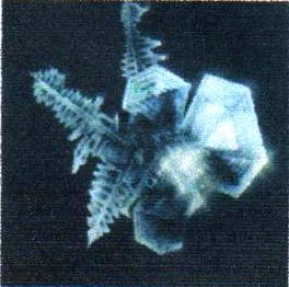 Кристалл воды ДО обработки